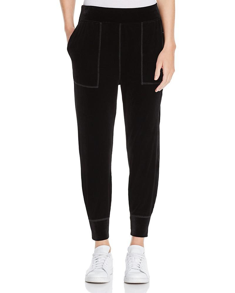 rag & bone/jean scout velvet jogger pants